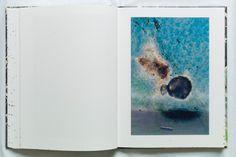 Coexistence by Stephen Gill - LightBox Stephen Gill, Lightbox, Photography, Photograph, Fotografie, Photoshoot, Fotografia