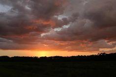 #photooftheday @saraleclaire904  Stellar Skies  #staugustine #sunsetskies #chasingstorms #stellarskies #sunsetafterthestorm #lovetherain #optoutside #howiflo #foridalifestyle #explore #floridavibes #pureflorida #nofilter #getoutside #livefree #exploreflorida #gofindit #natureisfree #happyplace #natureisart #floridalocal #moodygrams #usa_naturehippies  #summerdaze #neverstopexploring #summer  #travel #igersstaugustine #igersjax