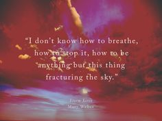 """""""I don't know how to breathe, how to stop it, how to be anything but this thing fracturing the sky."""""""