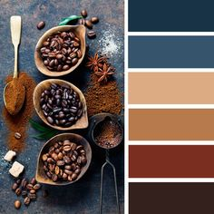 Blue and brown color palette inspired by coffee,coffee inspired color palette