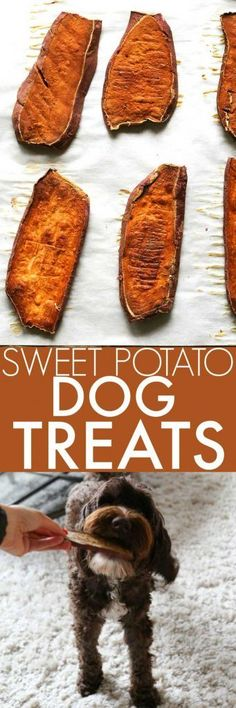 Sweet Potato Dog Chews only use one-ingredient to make a healthy, homemade dog treat for your favorite pet! DIY dog treats are a great gift too! Puppy Treats, Diy Dog Treats, Homemade Dog Treats, Dog Treat Recipes, Healthy Dog Treats, Dog Food Recipes, Food Tips, Diy Dog Gifts, Horse Treats