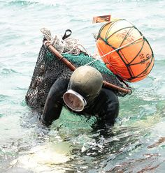 Jeju's Grandma Divers Series: A Haenyeo (diving woman) struggles with a heavy load of shellfish as she leaves the water during a diving competition on Jeju Island, Korea