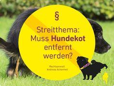 Streitthema: Muss #Hundekot entfernt werden? - #HUNDERECHT ANWALT #TIERRECHTSEXPERTE RA ACKENHEIL http://www.tierrecht-anwalt.de http://www.der-tieranwalt.de #Hund #Hundehaltung