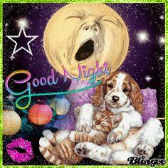 Cute Good Night, Good Night Gif, Good Night Image, Good Night Quotes, Day For Night, Night Time, Good Night Dear Friend, Good Night Thoughts, Good Night Everyone