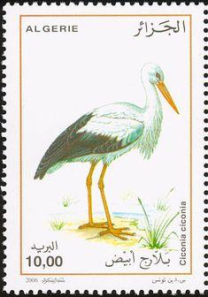 мар53Birds on stamps: Algeria Algerije Algérie