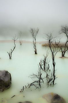 Like a scene from another planet... --Pia (Kawah Putih Lake, Indonesia)