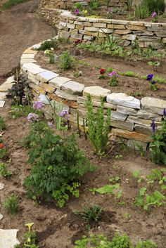 A new garden with several garden tiers and new growth. The stone retaining walls will keep the arrangements separate.