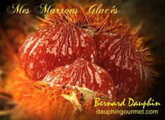Les premiers marrons arrivent sur les étals des marchés. L'occasion, cette année encore, de préparer les marrons confits qui serviront toute l'année pour les desserts et les glaces. Cette recette se réalise sur 7 jours. Elle peut être également réalisée...