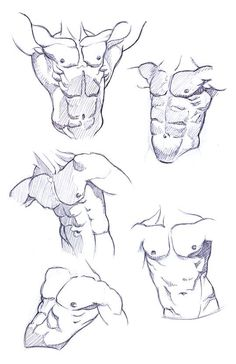 Anatomy Drawing Male The Society of Figurative Arts :: Modern Classical Life Drawing, Painting and Instruction Male Figure Drawing, Figure Sketching, Figure Drawing Reference, Guy Drawing, Life Drawing, Drawing Sketches, Art Drawings, Anatomy Sketches, Anatomy Drawing