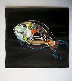 Pesce Chirurgo Zebrato tempera su carta preparata di Stellangelo