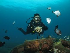 Diving, Scuba Diving