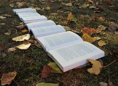 Booktober heartcover.eu – Julias Bücherblog