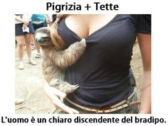PIGRIZIA + TETTE  L'uomo è un chiaro discendente del bradipo  (solo che il bradipo quando si accoppia con la bradipi ci mette massimo 2 secondi … è l'unica cosa che fa velocemente …)
