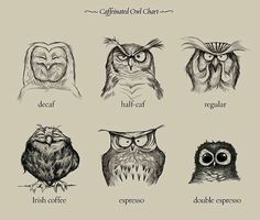I'm a decaf owl myself.REGULAR WITH AN OCCAISIONAL MEDICINAL IRISH THROWN IN WHEN LIFE WARRANTS IT!