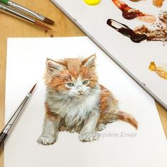I enjoyed working on this miniature painting of a maine coon kitten today. Even though it looks painted in detail, my aim was to keep a certain 'brush-touch' to maintain the painty-feeling. That requires a certain alertness during painting, no mistakes allowed in acrylics! Visit my webshop to see which illustrations are up for sale here: http://www.marjoleinkruijt.com/product-category/original-illustrations/
