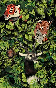 Gli animali di Chervelle Fryer | PICAME