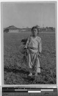 Girl [boy] standing in a field, Korea, ca. 1920-1940 :: International Mission Photography Archive, Maryknoll