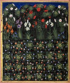 botanical garden Convenevole da Prato, Carmina regia, Tuscany ca. 1335 BL, Royal 6 E IX, fol. 15v