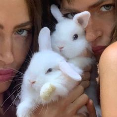 Your guide to the best A-list cruelty free beauty out there Cute Creatures, Beautiful Creatures, Animals Beautiful, Baby Animals, Cute Animals, Oui Oui, Jolie Photo, Aesthetic Pictures, Woodland Nursery