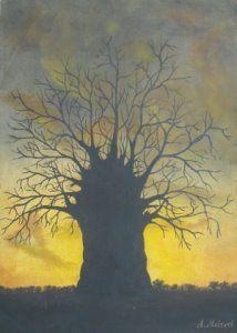 Baobab tree (Oil on Canvas)