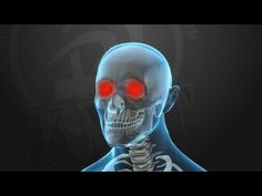 KRAV MAGA TRAINING • Knockout Pressure Points (part 5 of 5) - YouTube
