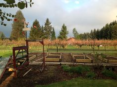 Creston BC British Columbia, Firewood, Vineyard, Life, Outdoor, Outdoors, Woodburning, Vine Yard, Vineyard Vines