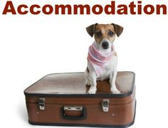 Dog friendly accommodation in Norfolk, Hunstanton & District Dog Friendly Accommodation, Dog Friendly Holidays, Norfolk, Dog Friends, Places To Go, Dogs, Doggies, Dog