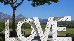 Best Wedding and Portrait Photographers Darrell Fraser South Africa Portrait Photographers, South Africa, Wedding Venues, Wedding Decorations, Wine, Inspiration, Wedding Reception Venues, Biblical Inspiration, Wedding Places