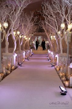 Winter Wedding Decor - LOVE LOVE LOVE the idea of white trees at the church AND the reception.  I've seen something similar done DIY by cutting down large branches, spraying them white, and setting them with a bucket of cement.  Maybe also at the church and/or reception entrance? Winter Wonderland, Trendy Wedding, Wedding Ceremony, Weddings, Table Decorations, Ideas, Home Decor, Homemade Home Decor, Table Centerpieces