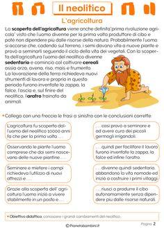 Schede didattiche sul neolitico per bambini per verifiche della classe terza della scuola primaria: mappa concettuale, agricoltura, allevamento, villaggi e utensili