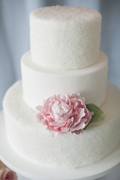 Is Simple Yet Elegant Wedding Cakes The Most Trending Thing Now? - Is Simple Yet Elegant Wedding Cakes The Most Trending Thing Now? - simple yet elegant wedding cakes Pretty Wedding Cakes, Small Wedding Cakes, Elegant Wedding Cakes, Wedding Cake Designs, Pretty Cakes, Beautiful Cakes, Wedding Ideas, Chic Wedding, Wedding Reception