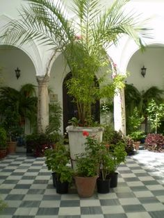 Patio en Arcos de la Frontera ,Cádiz  Spain