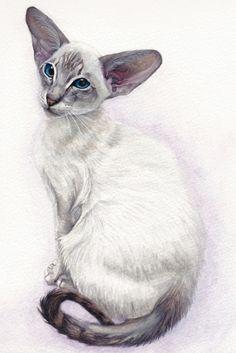 cat painting - Pesquisa Google