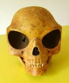 The Sealand Skull and the Order of Pegasus' Light | Circa71