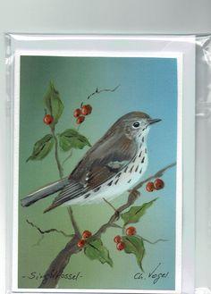 Grüße - Grußkarte - Singdrossel, handgemalt - ein Designerstück von Vogelmalerin bei DaWanda