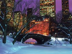 Christmas in New york & ice skate in Central Park