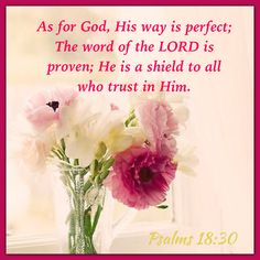 """As for God, his way is perfect: the word of the Lord is tried: he is a buckler to all those that trust in him."" Psalm 18:30 KJV"