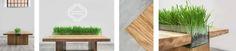 N WOOD WE TRUST https://www.facebook.com/inwoodwetrustpolska/ Find us on ETSY: https://www.etsy.com/shop/InWoodWeTrustPolska #inwoodwetrust #iwwt #woodworking #woodporn #woodart #wooddesign #woodtable #woodentables #woodcoffeetable #woodencoffeetables #oak #bogoak #ash #americanwalnut #design #wooddesign #polishdesign #interior #intothewoods #industrial #industrialdesign