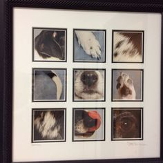 Dog Photos, Pet Pictures, Pet Dogs, Dogs And Puppies, Doggies, Animals And Pets, Cute Animals, Paw Print Art, Dog Rooms