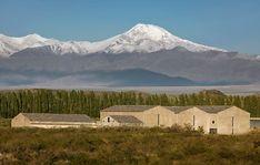 Bodega Atamisque  Valle de Uco - Mendoza - Argentina  (detalles del proyecto en: http://www.bormidayanzon.com.ar/bodegas/atamisque)