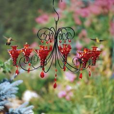 Awesome DIY Chandelier Hummingbird Feeder Ideas - Home Art & Diy Hummingbird Garden, Hummingbird House, Hummingbird Food, Garden Birds, Diy Chandelier, Chandeliers, Outdoor Chandelier, Humming Bird Feeders, Humming Birds