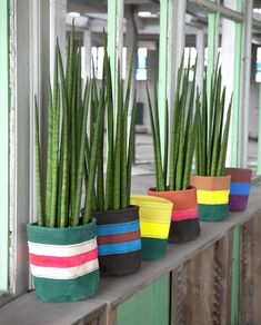 designsponge-product-serax-bags-2  plants in tote bags as gifts...wouldn't have thought of that...