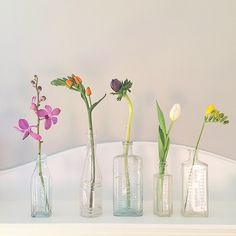 "Gefällt 308 Mal, 31 Kommentare - Karen (@karenlewistextiles) auf Instagram: ""Thank you all for your lovely wishes...I am feeling thoroughly spoilt and loved...from all of…"" Bottle Art, Glass Vase, Bottles, Flowers, Inspiration, Instagram, Home Decor, Biblical Inspiration, Decoration Home"