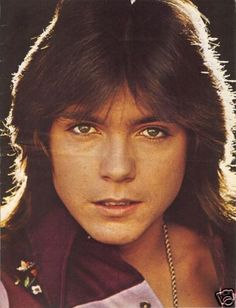 David Cassidy - never in love with David or Donny - not cool enough for me ... but he was everywhere!