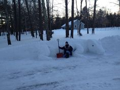 Lizard snow sculpture by Dawn Gould