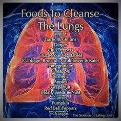 Holistic Health Remedies To cleanse the lungs means to rid your body of the toxins that could be affecting the function of the organ. Periodically detoxing them will keep them health and functioning well! Healthy Detox, Healthy Life, Healthy Living, Detox Foods, Healthy Foods, Health And Nutrition, Health And Wellness, Health Tips, Health Fitness