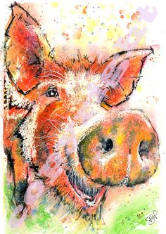 Fabulous Print of Original Watercolour Pig by JaPeyArtnStuff
