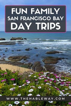 Visiting the San Francisco Bay Area in California? Here are a few great things you can do! #halfmoonbay #california #daytrips #roadtrip #muirwoods #santacruz #californiastateparks California With Kids, California City, California Vacation, Visit California, Free Travel, Usa Travel, Travel Tips, Travel Destinations, Best Family Vacations