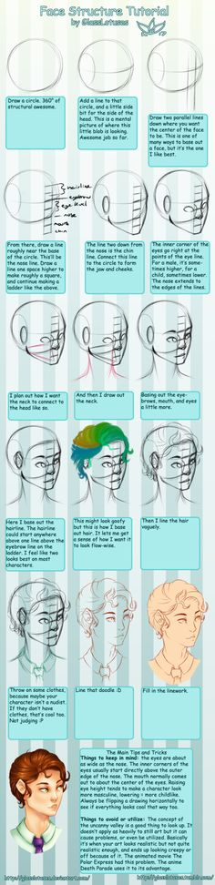 Face Structure Tutorial by GlassLotuses - Art Tutorial and Reference Blog