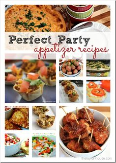 Perfect Party Appetizer Recipes! Cranberry Pinot Noir Meatballs, Kickin' Chicken Bites, Ham and Cheese Sliders, and many more!!
